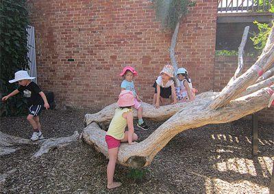 climbing-mates
